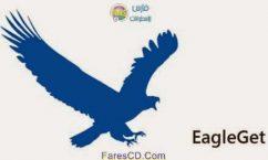 الإصدار الجديد من البرنامج المجانى لتحميل الملفات من النت EagleGet 2.0.1.9 للتحميل برابط مباشر