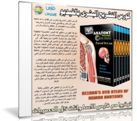 كورس التشريح البشرى بالفيديو   Acland's DVD Atlas of Human Anatomy