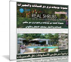 مجموعة موديلات ثرى دى للنباتات والشجيرات | Real Shrubs