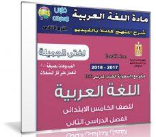 اسطوانة اللغة العربية للصف الخامس الإبتدائى | ترم ثانى 2018