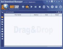 برنامج التحميل من الإنترنت | Ant Download Manager Pro v1.10.0 Build 53224