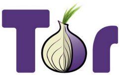 متصفح تور   Tor Browser 8.0.6